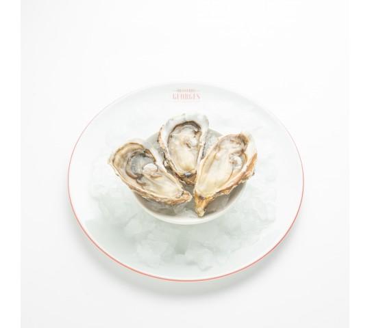 Perle de Quiberon